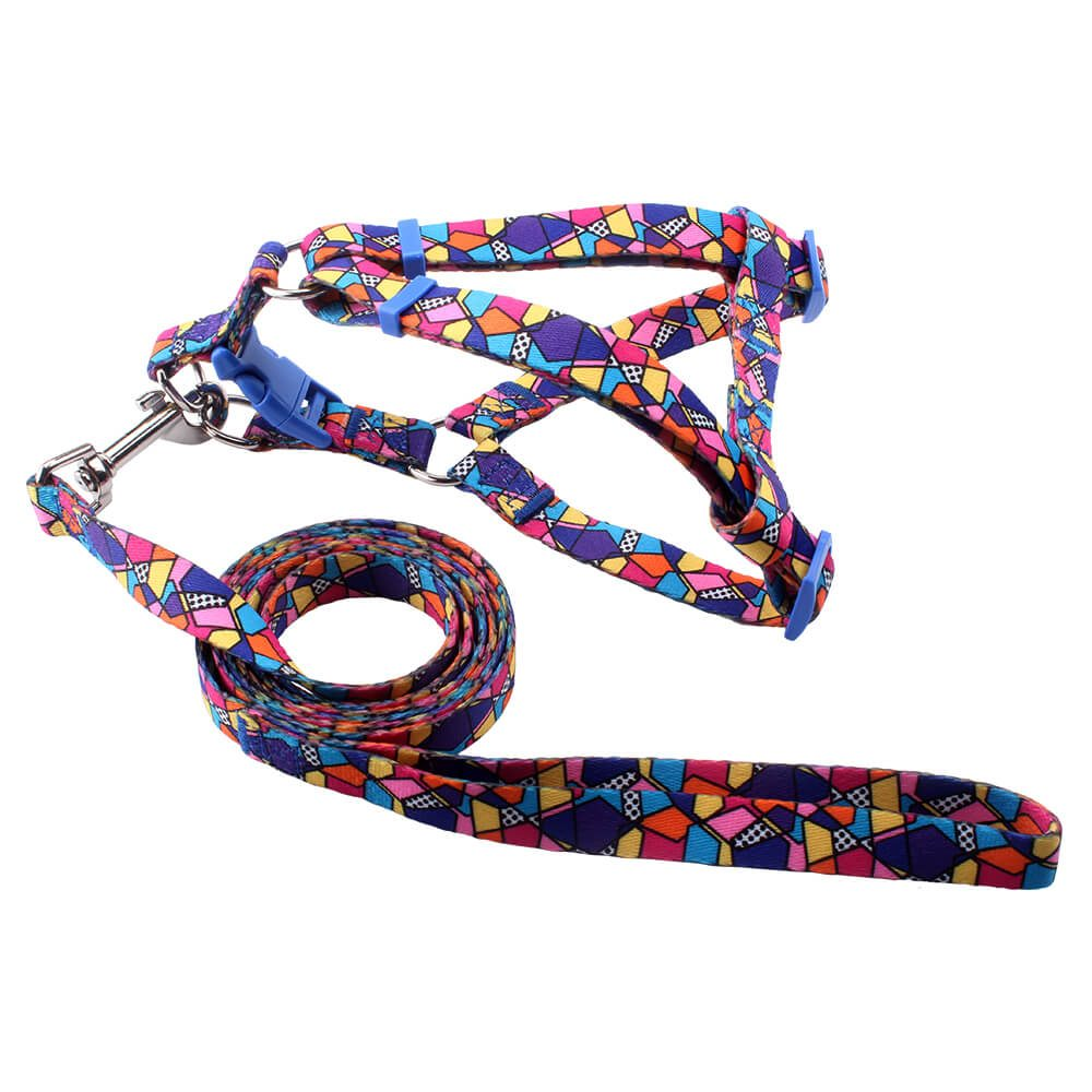Puppy Harness&Lead: Sale Polyester Puppy Harness&Lead Factory-QQpets