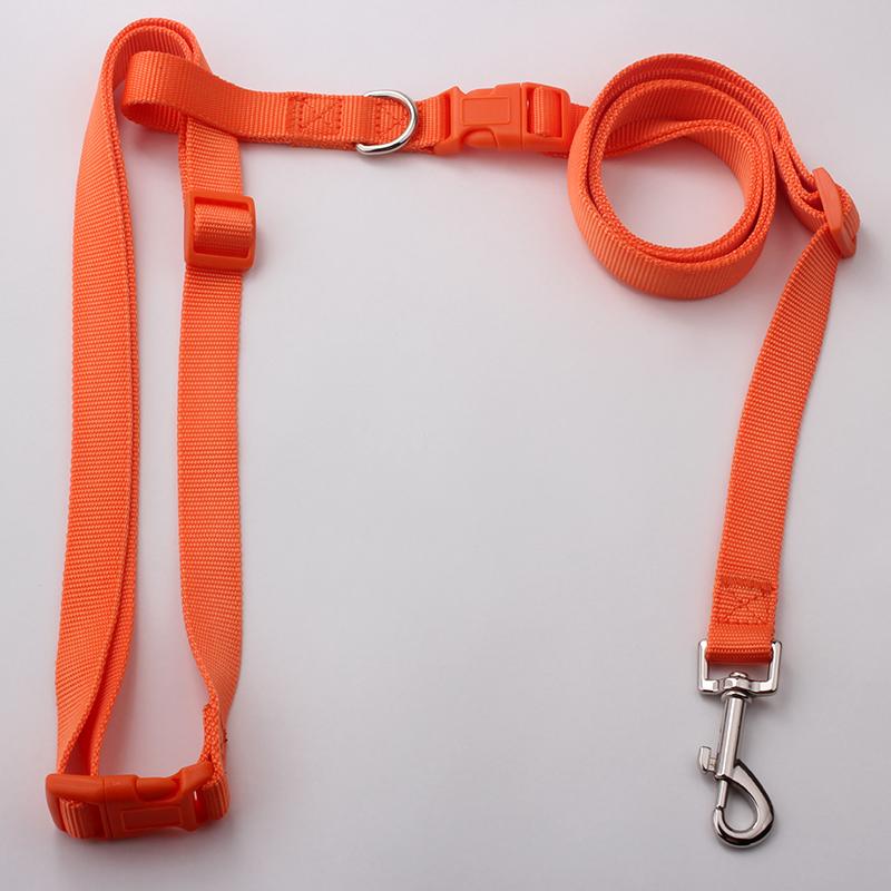 Factory Direct Running Dog Leash: High Quality Running Dog Leash-QQpets