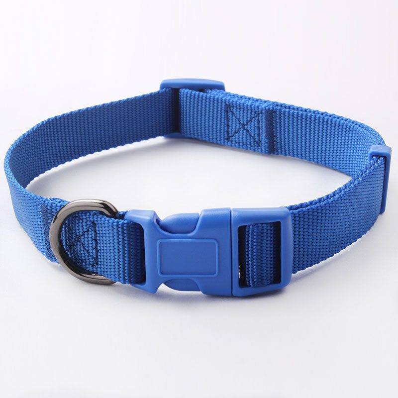Nylon Solid Color Dog Collar: Factory Professional Dog Collar-QQpets