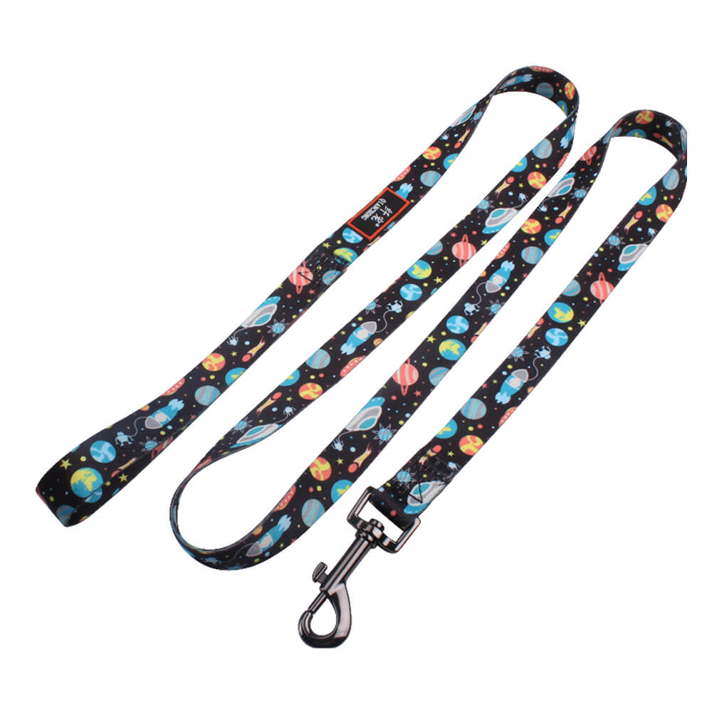 Dog training leash supply: 2.0 size long dog leash for sale online-qqpets