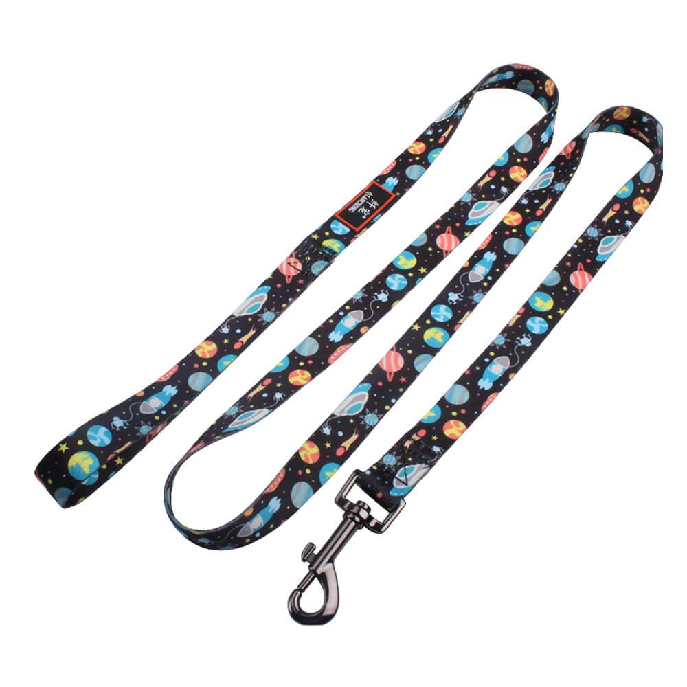 dog training leash supply