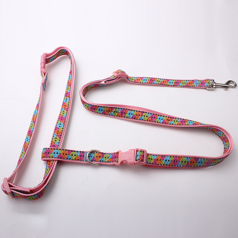 Customized Running Dog Leash: Top Grade Supplier Running Dog Leash-QQpets