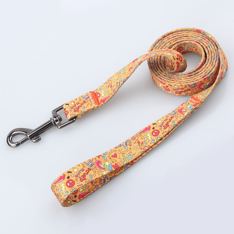 Dog Training Leash: Quality Polyester Dog Training Leash Custom-QQpets