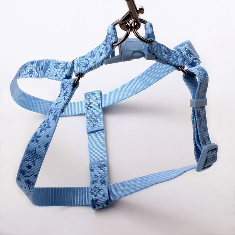 harness dog suppliers