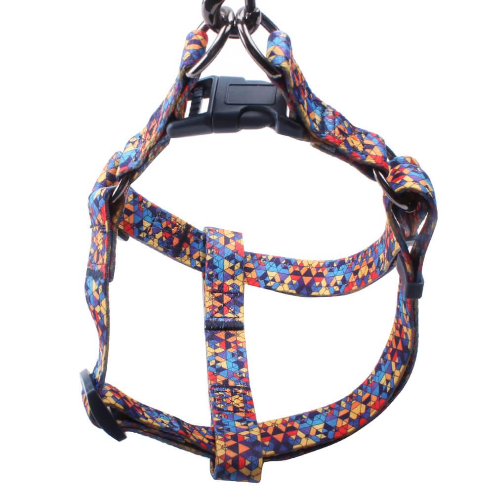 تسخير الحيوانات الأليفة المخصصة: حزام الحيوانات الأليفة المباشر من المصنع مقاس 2.0 من البوليستر qqpets