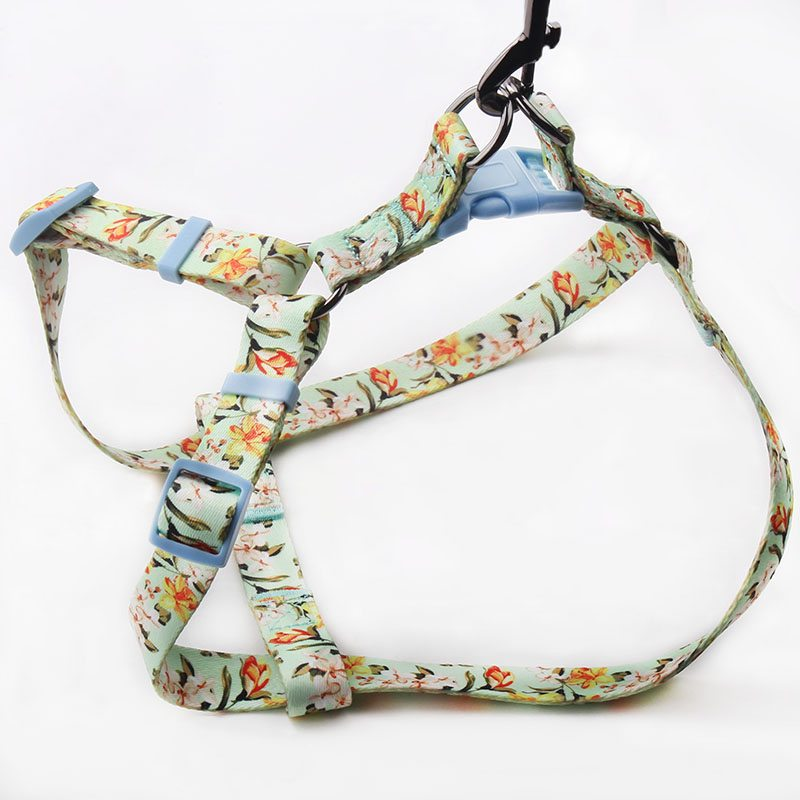 Pet Harnesses Manufacturer: Custom Pet Harness Factory Directly-QQpets