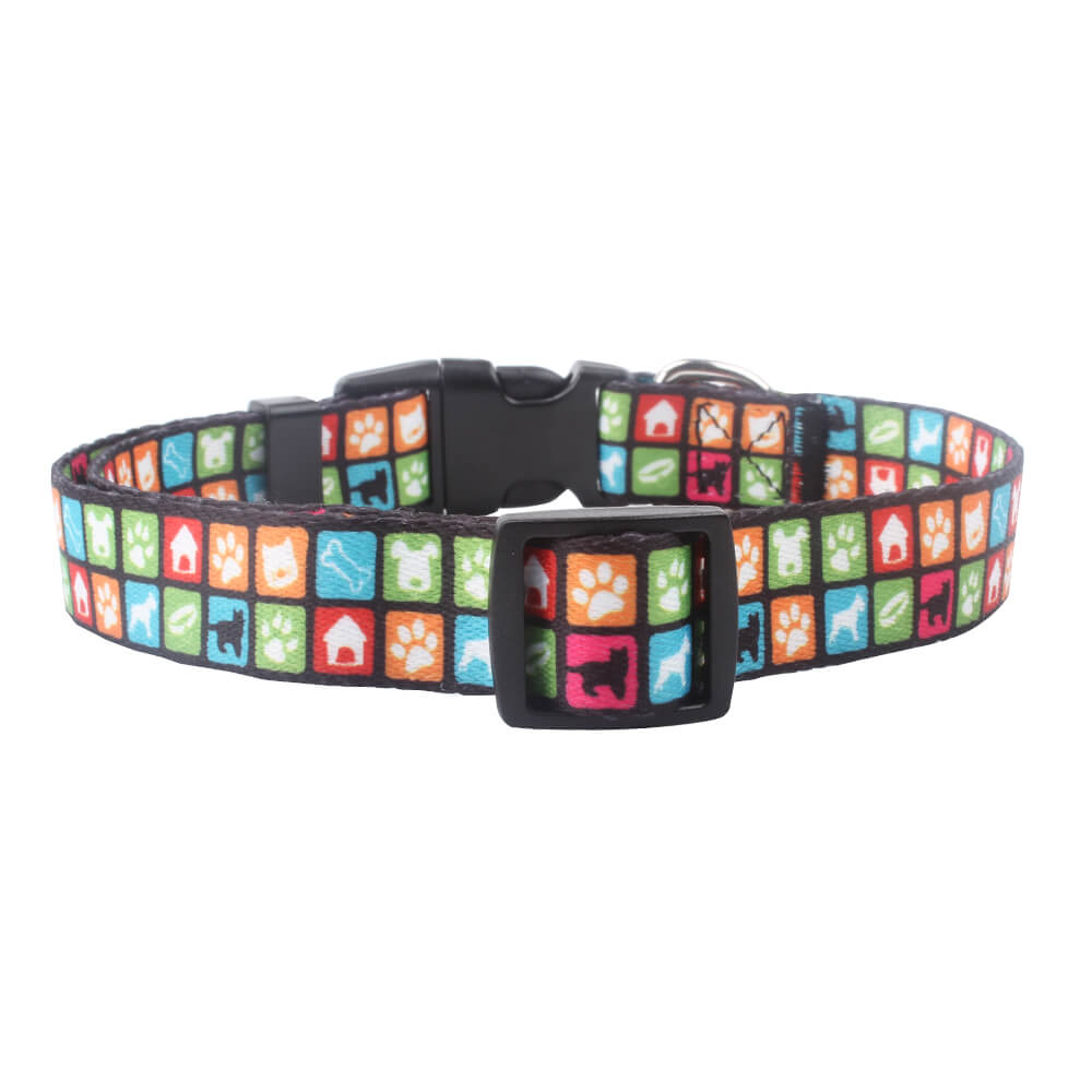 personalized pet collar service