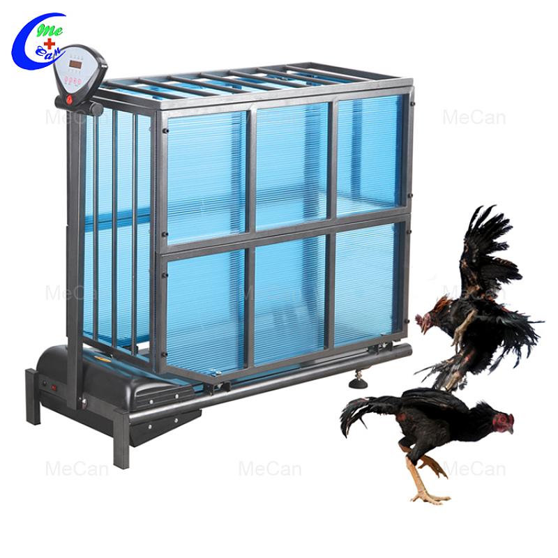 Rooster Treadmill Teadmill للقطط