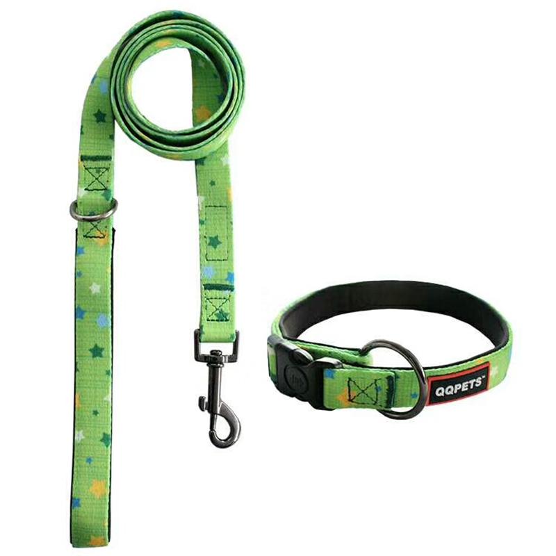 padded dog collar leash