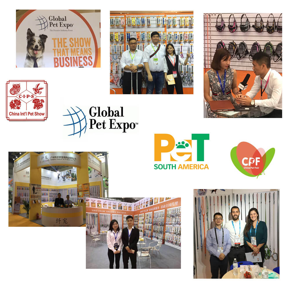 pet fairs