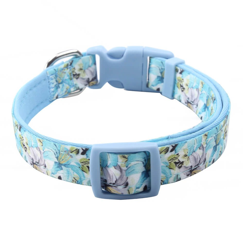 Padded Dog Collar Supplies: Sale Padded Dog Collar Manufacturer-qqpets