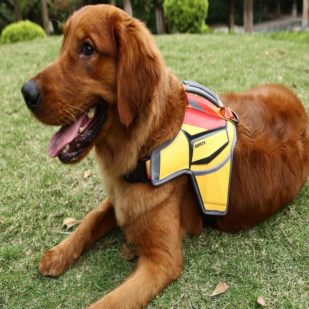 สายรัดนวดสุนัขจากวัสดุ PU - ชุดฟุตบอลโลก