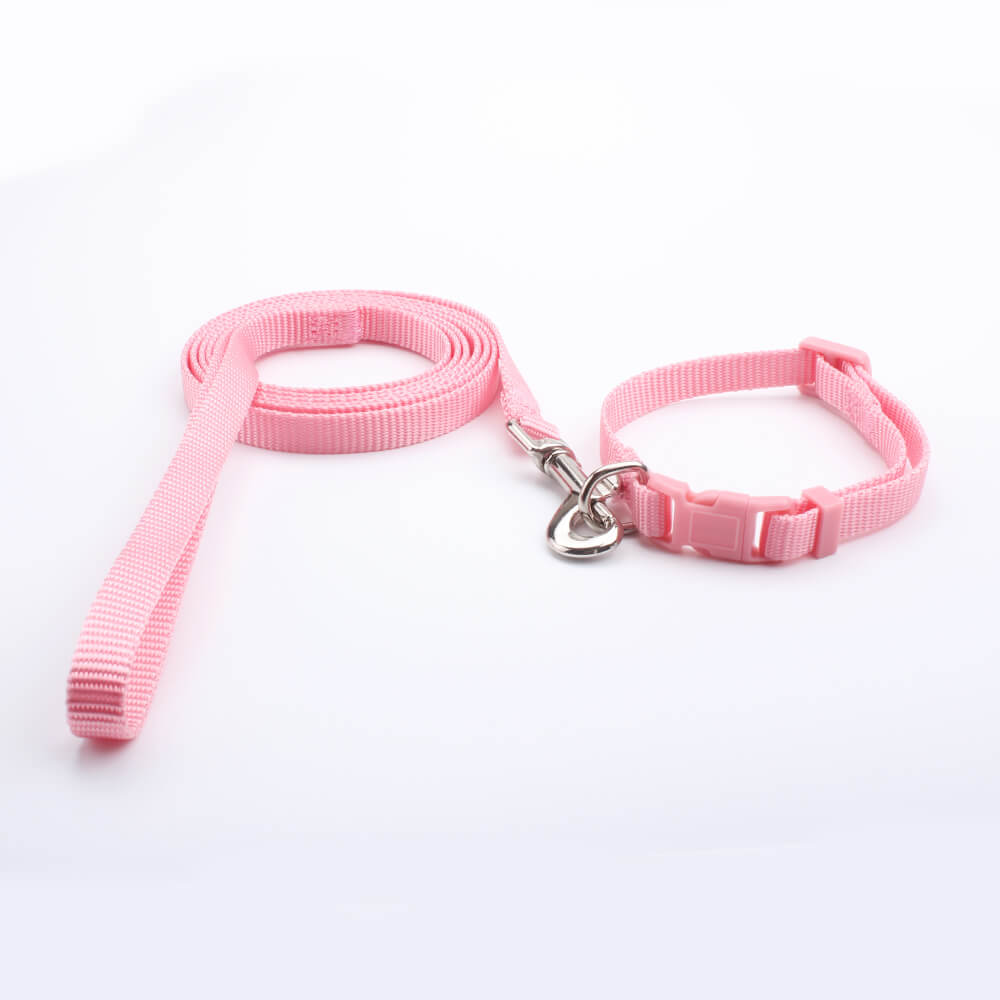 Dog Collar Leash: Nylon Small Dog Collar Leash Factory-QQpets