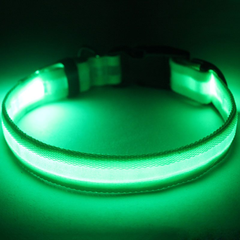 led dog collar factory directly