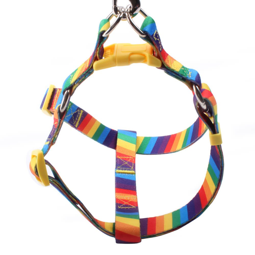 Rainbow Dog Harness: Popular Rainbow Dog Harness Wholesale-QQpets