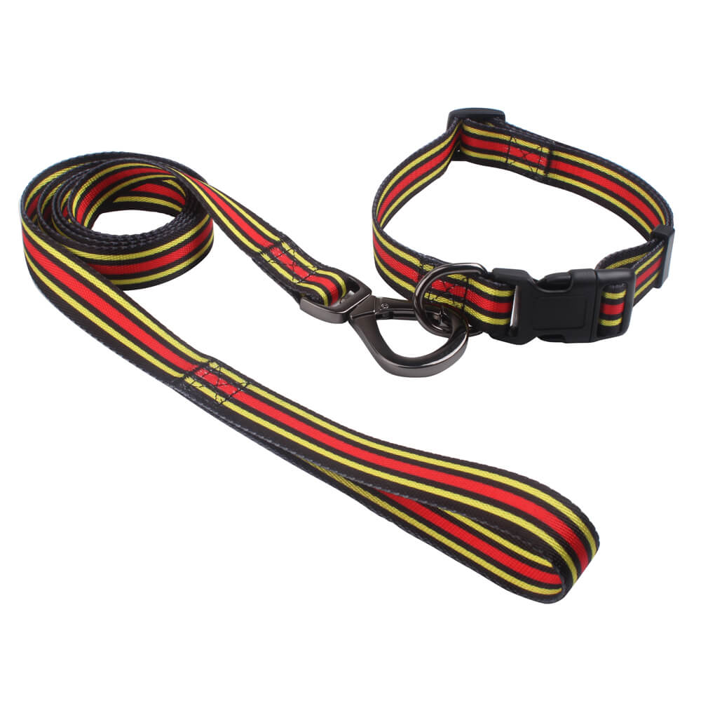 Dog collars & leash: 2020 Factory direct polyester dog collars & leash-QQPETS