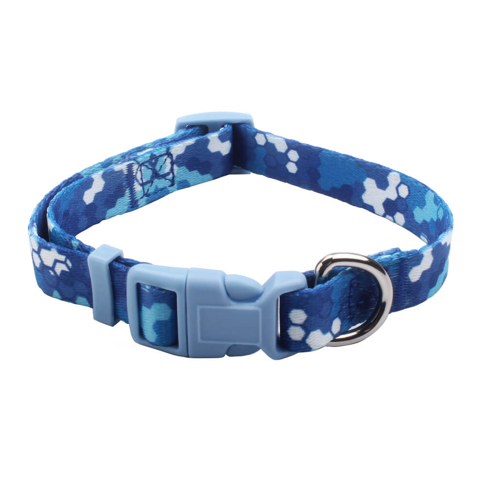 Unique Collars: Popular Dog Collars Design For Dogs Factory-qqpets