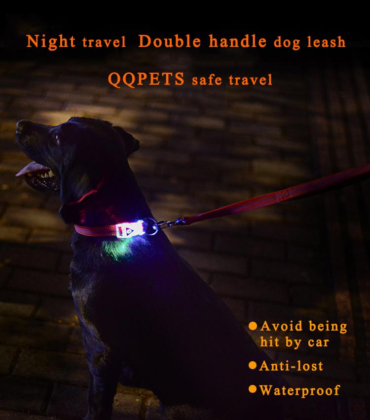 ปลอกคอสุนัขหัวเข็มขัด LED: อุปกรณ์มายากลสัตว์เลี้ยงตอนกลางคืนช่วยให้คุณและสุนัขของคุณเดินในเวลากลางคืน!