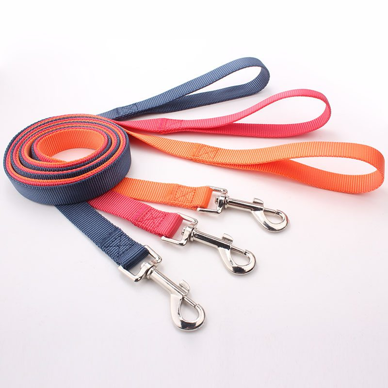 QQPETS Dog Leash