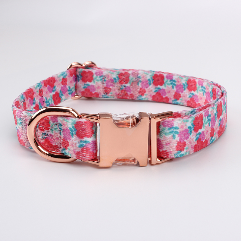 High quality pet supplies making gold buckle dog collar