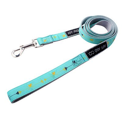 Manufacturer Dog Leash: Factory Direct Dog Leashes Nylon-QQpets