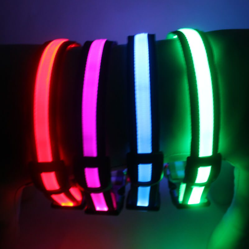 Glow dog collar: Best led dog collar for sale, light up at dark-QQPETS