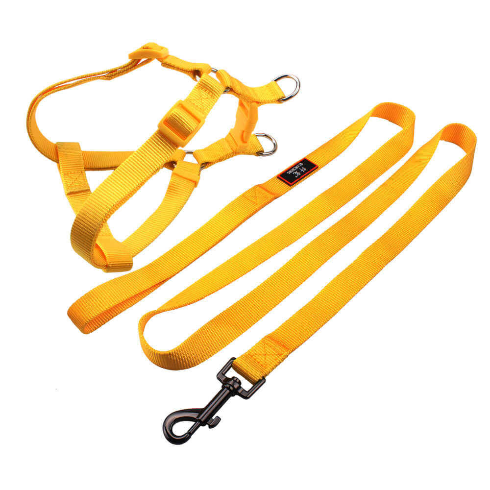 Dog harnesses & leash: Hot sell no pull dog harnesses & leash supply-QQPETS