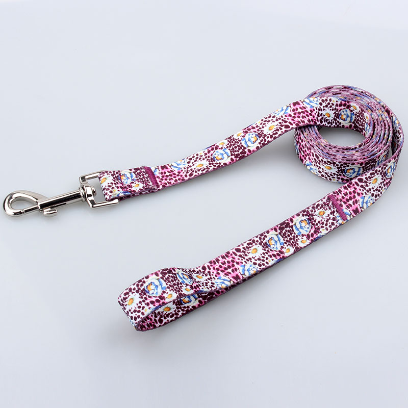 Personalized Pet Dog Leash: Fashional Polyester Pet Dog Leash Factory-QQpets