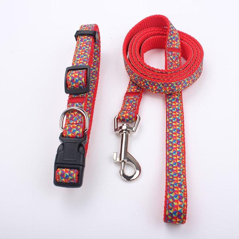 large dog collars leash supplier