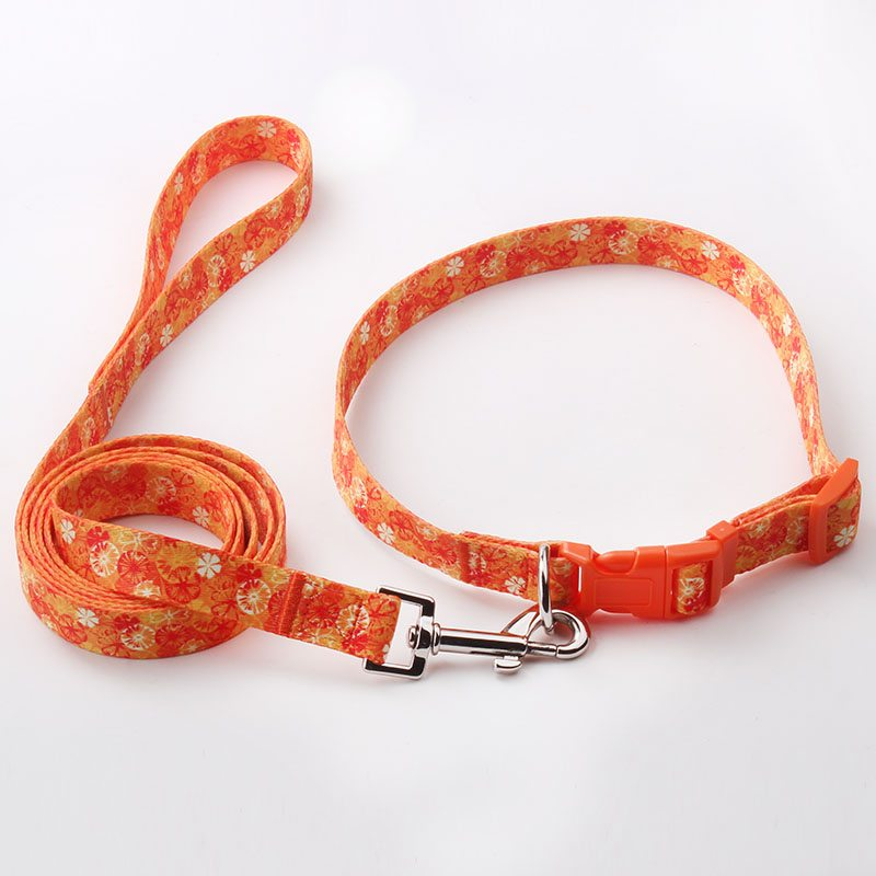 Manufacturer Dog Leash&Collar: Polyester Custom Dog Leash&Collar-QQpets