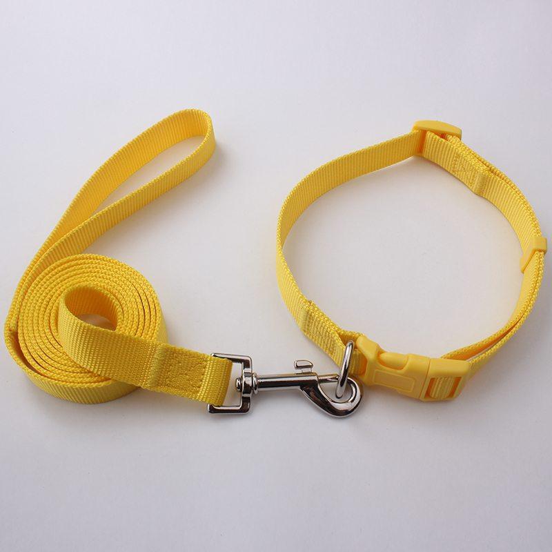 Best Dog Collar Leash: Wholesale Custom Dog Collars Leashes Factory-QQpets