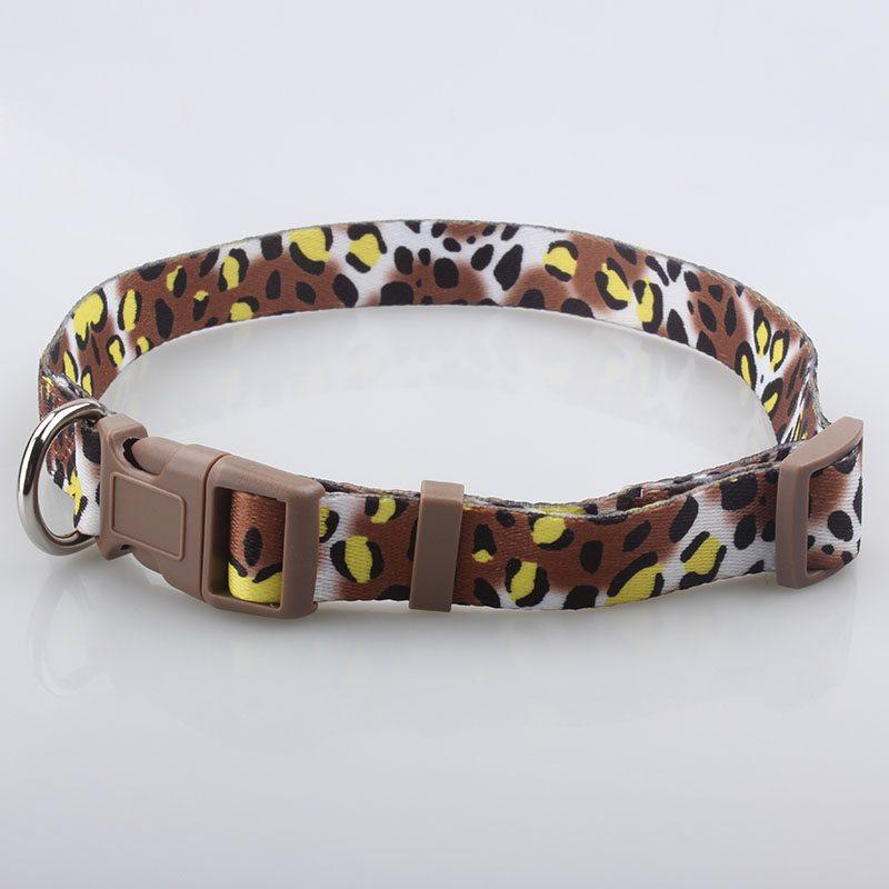 Katzenhalsbänder Großhandel: Hochwertige Katzenhalsbänder Supplier-QQpets Factory