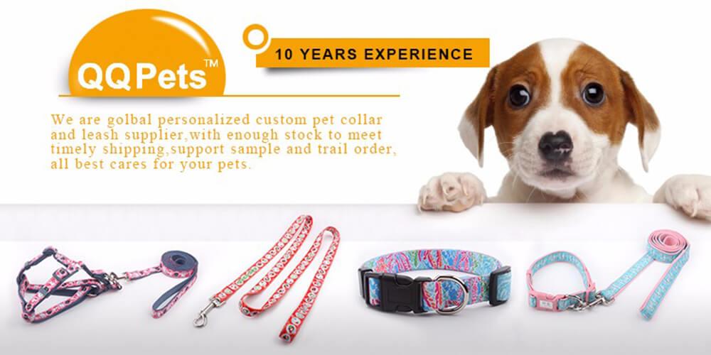 dog collars leash supply