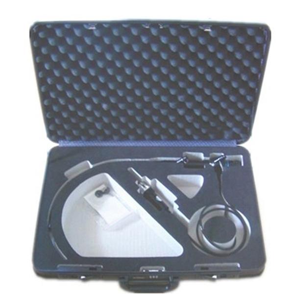 Portable ENT Endoscope