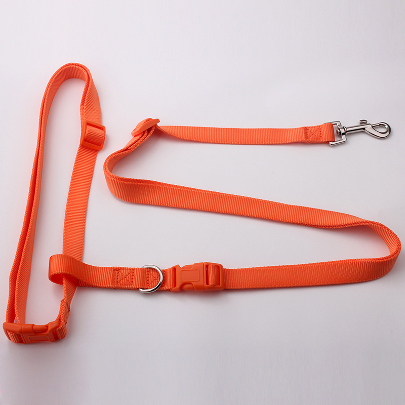 Adjustable Hands-Free Dog Leash