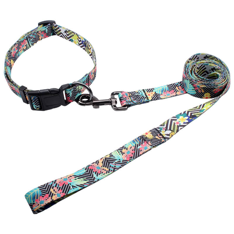 Custom Dog Collars Leashes: Dog Collars Leashes Wholesale, Pet Supplies-qqpets