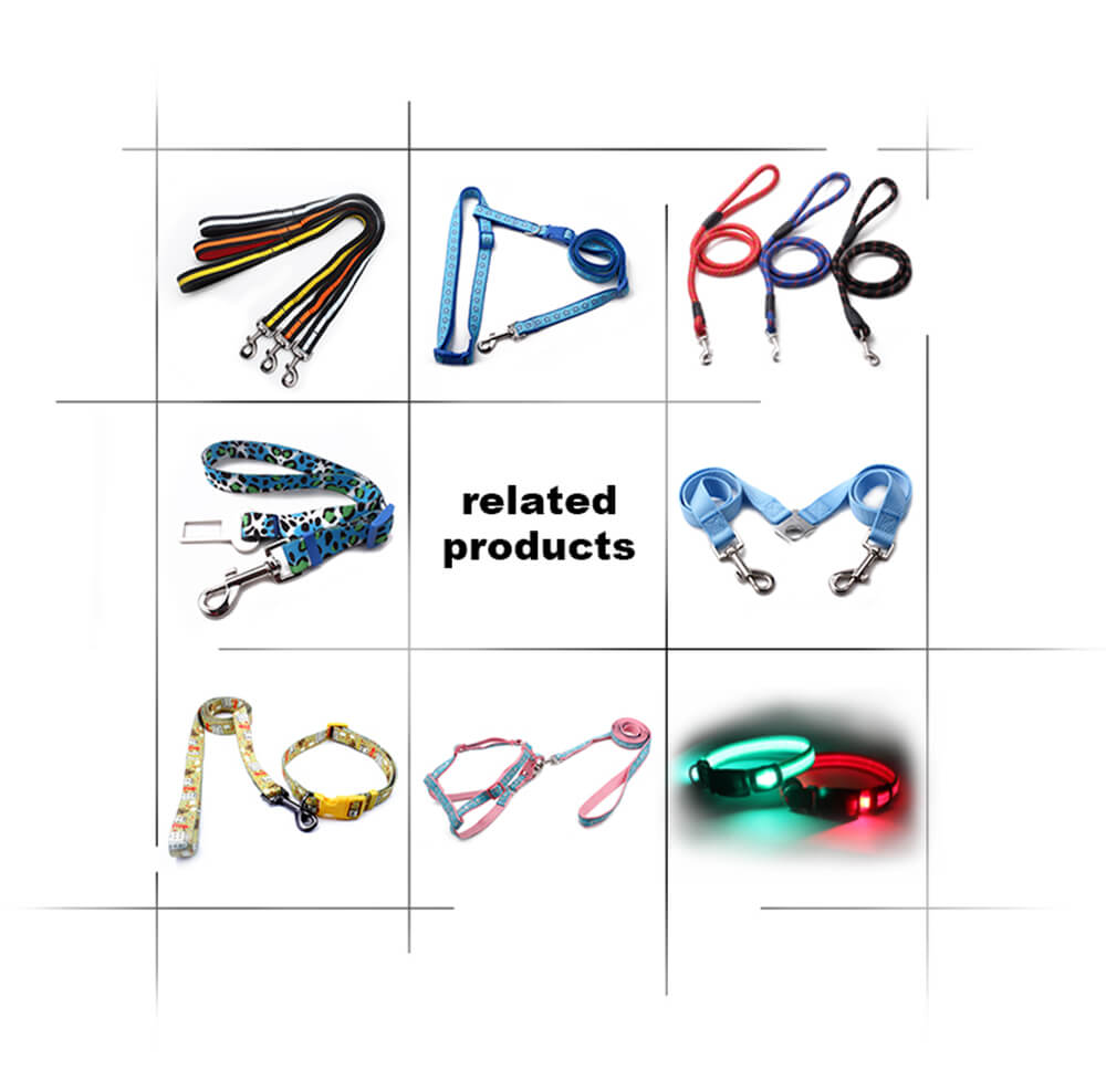 custom logo pet collars leash supplier