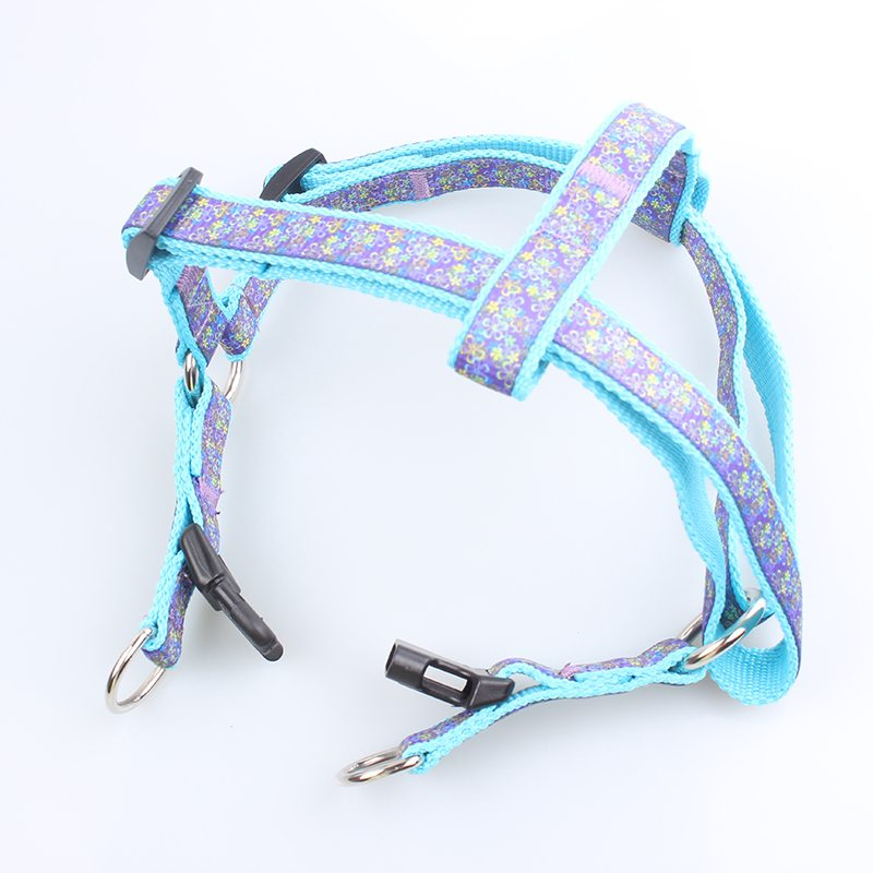 Nylon Training Dog Harness: Professional Dog Harness Manufacturer-QQpets