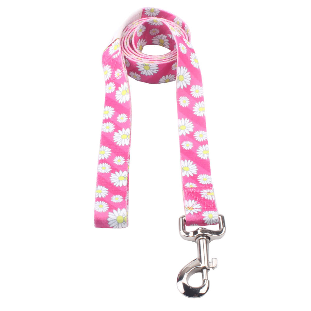 Long Dog Lead: Best polyester strong dog leash with logo supply-qqpets