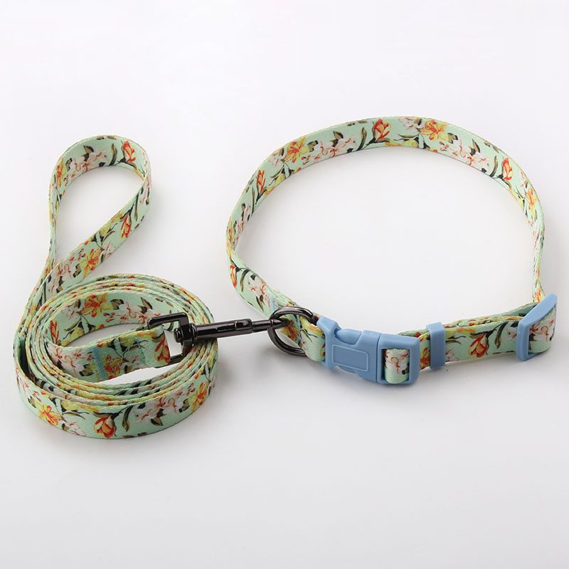Dog Collars&leashes Factory: Polyester Custom Dog Collars&Leashes-QQpets