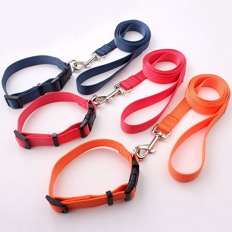 Puppy Lead Collar:  Best Nylon Puppy Leads Collars Supplier-QQpets