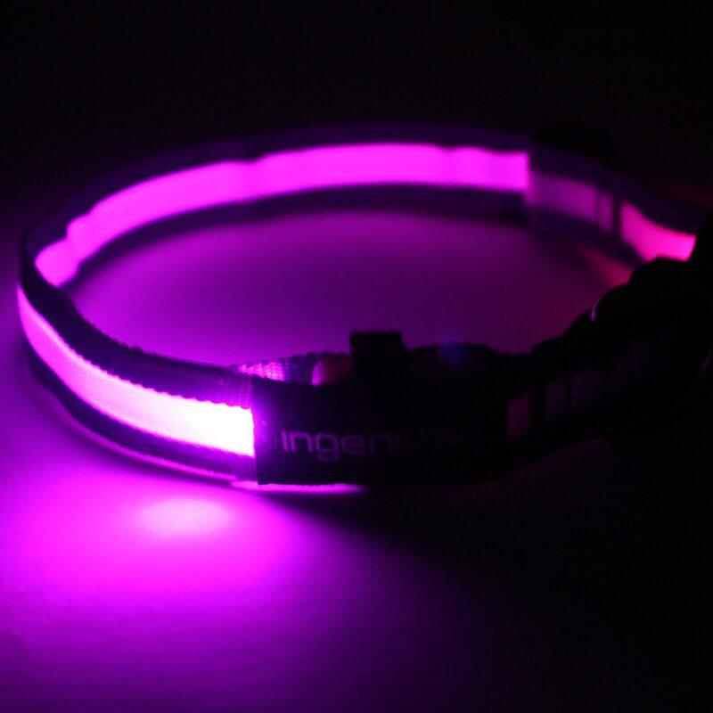 Light Dog Collars: New Design Light Dog Collars Factory Directly-QQpets