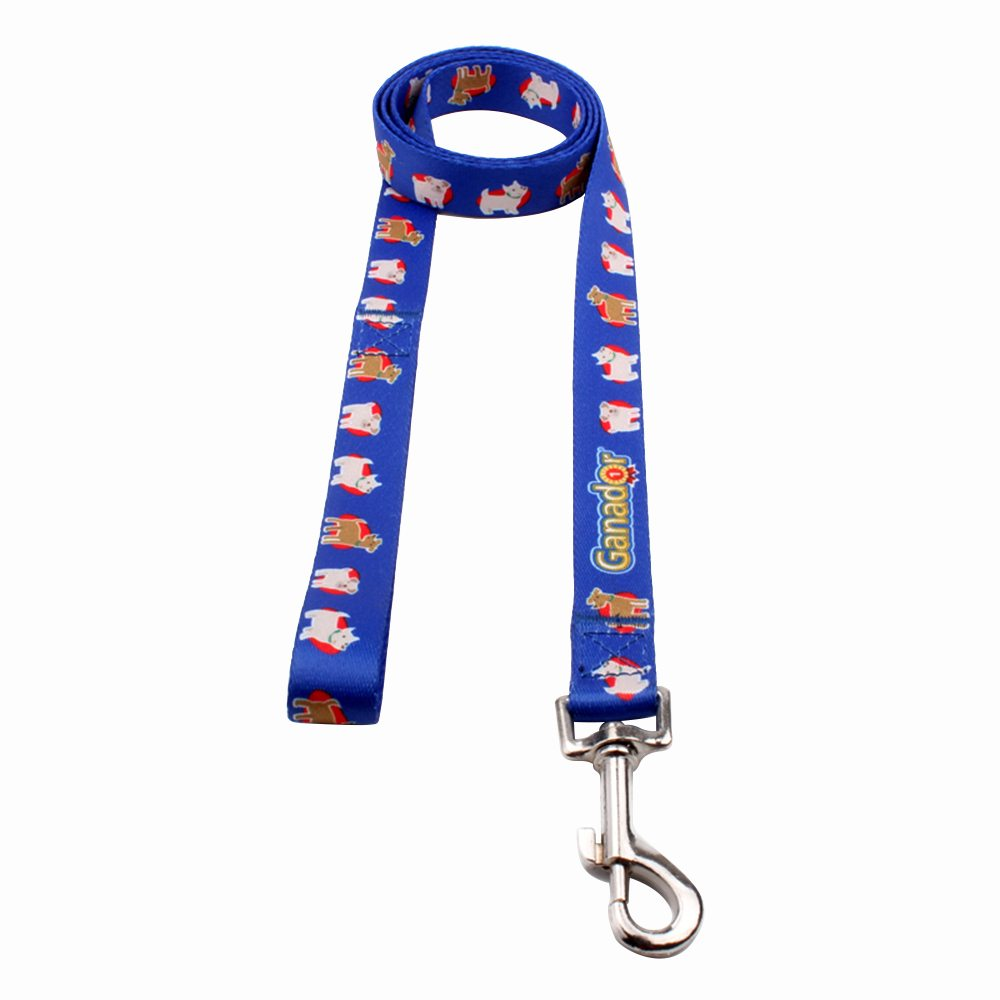 Promotion Dog Leads Supply: Best Dog Leads Factory Wholesale-QQpets