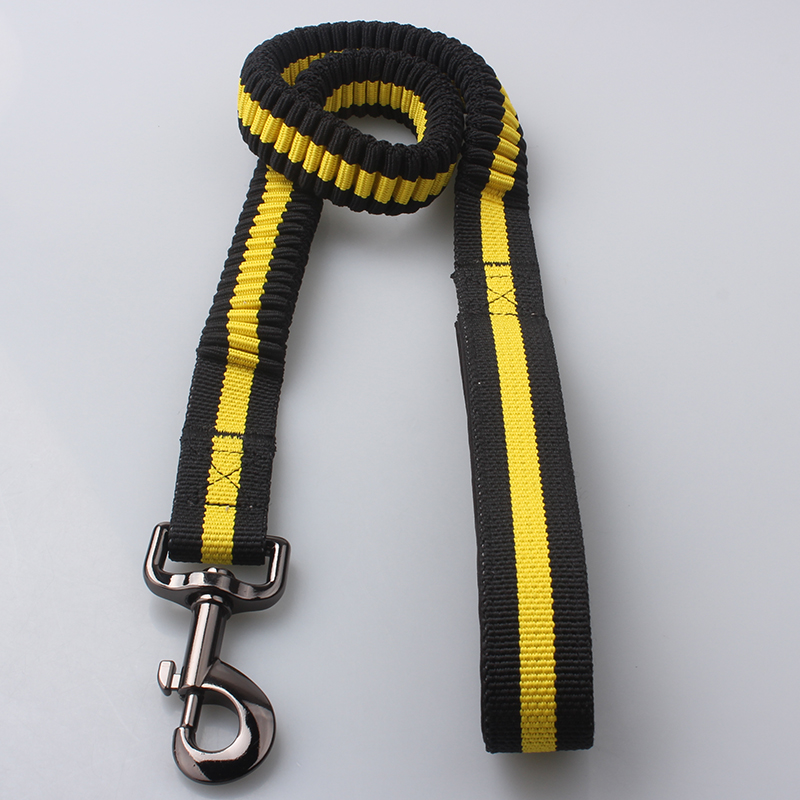 Polyester Spring Dog Leash: Factory Supply Spring Dog Leash-QQpets