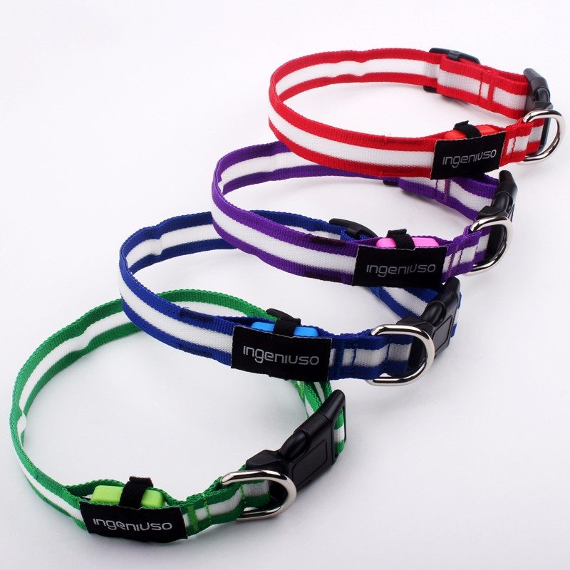 flashing dog collars