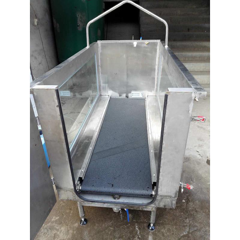 آلة الجري الكهربائية لإعادة التأهيل الطبي تحت الماء للكلاب