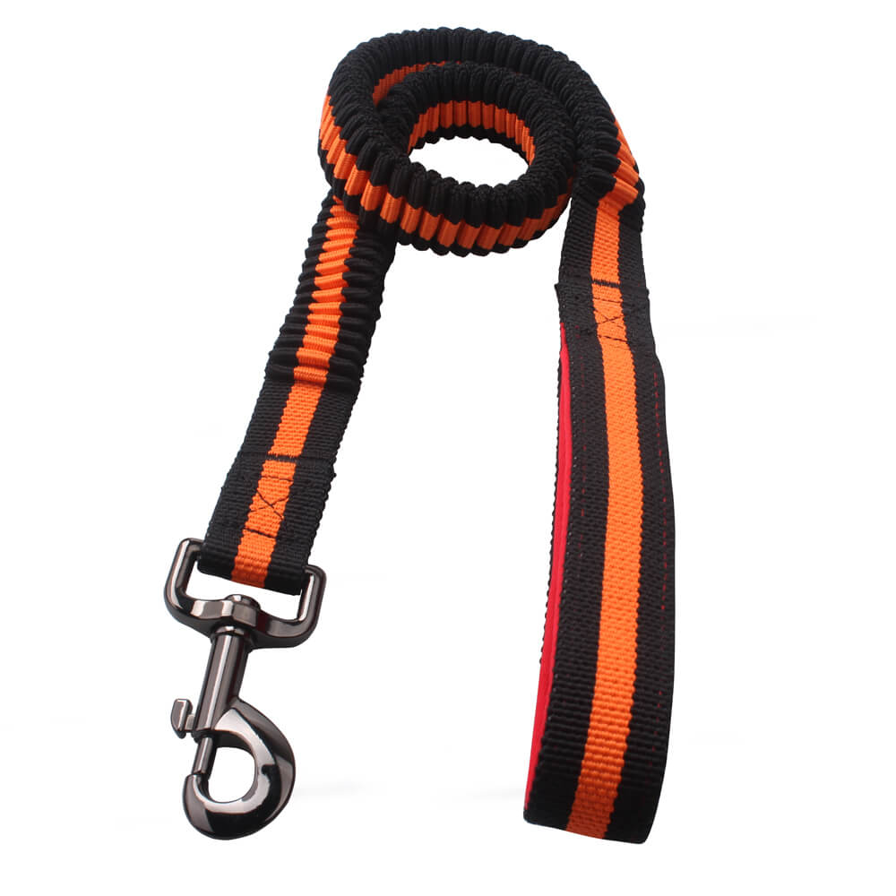 Polyester Woven Spring Dog Leash: Factory Directly Spring Dog Leash-QQpets