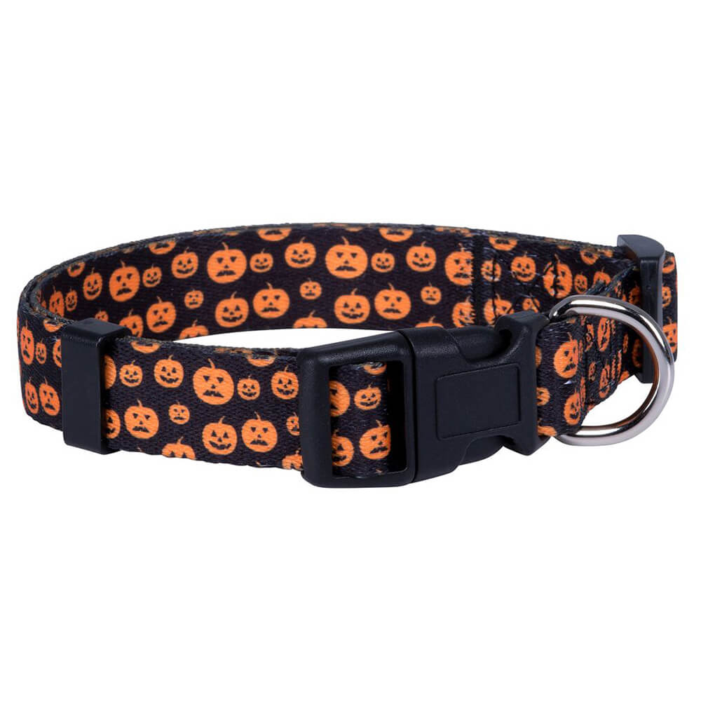 Dog training collar: 2.0 Medium dog collar with pumpkin logo supply-QQPETS