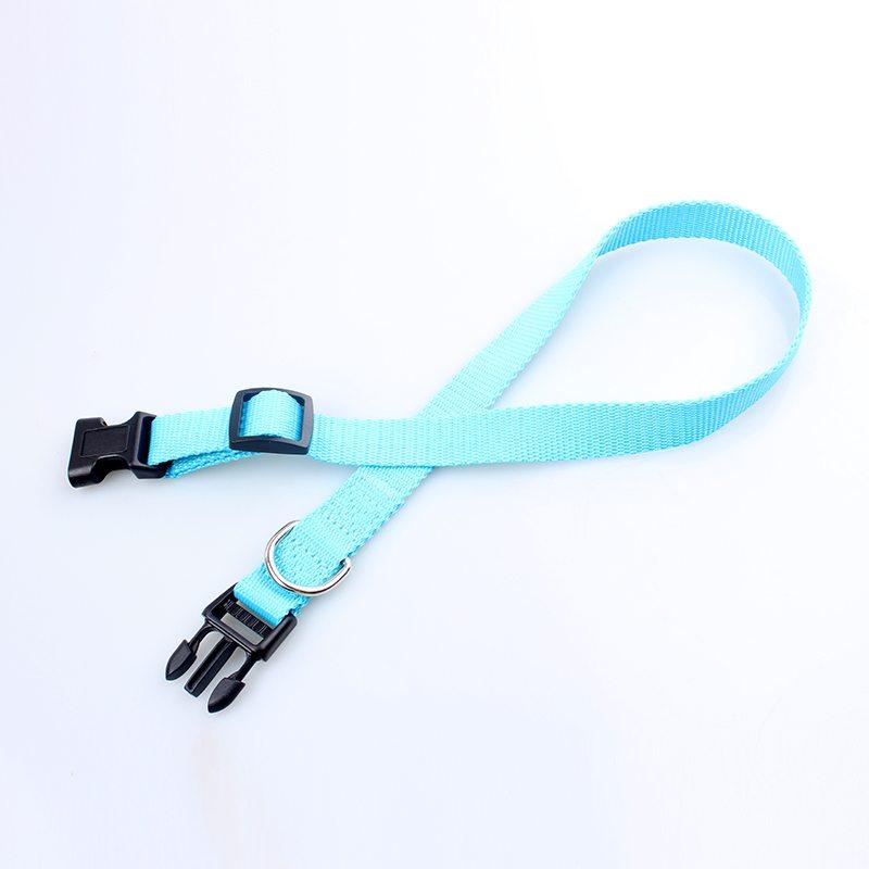 dog training collars wholesale