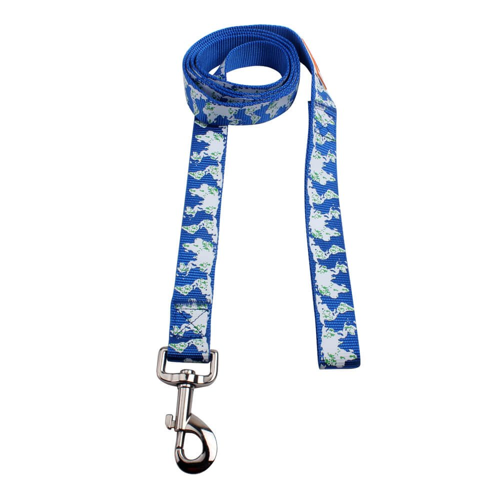Nylon dog leashes for sale: Custom logo dog leash wide 145 cm long